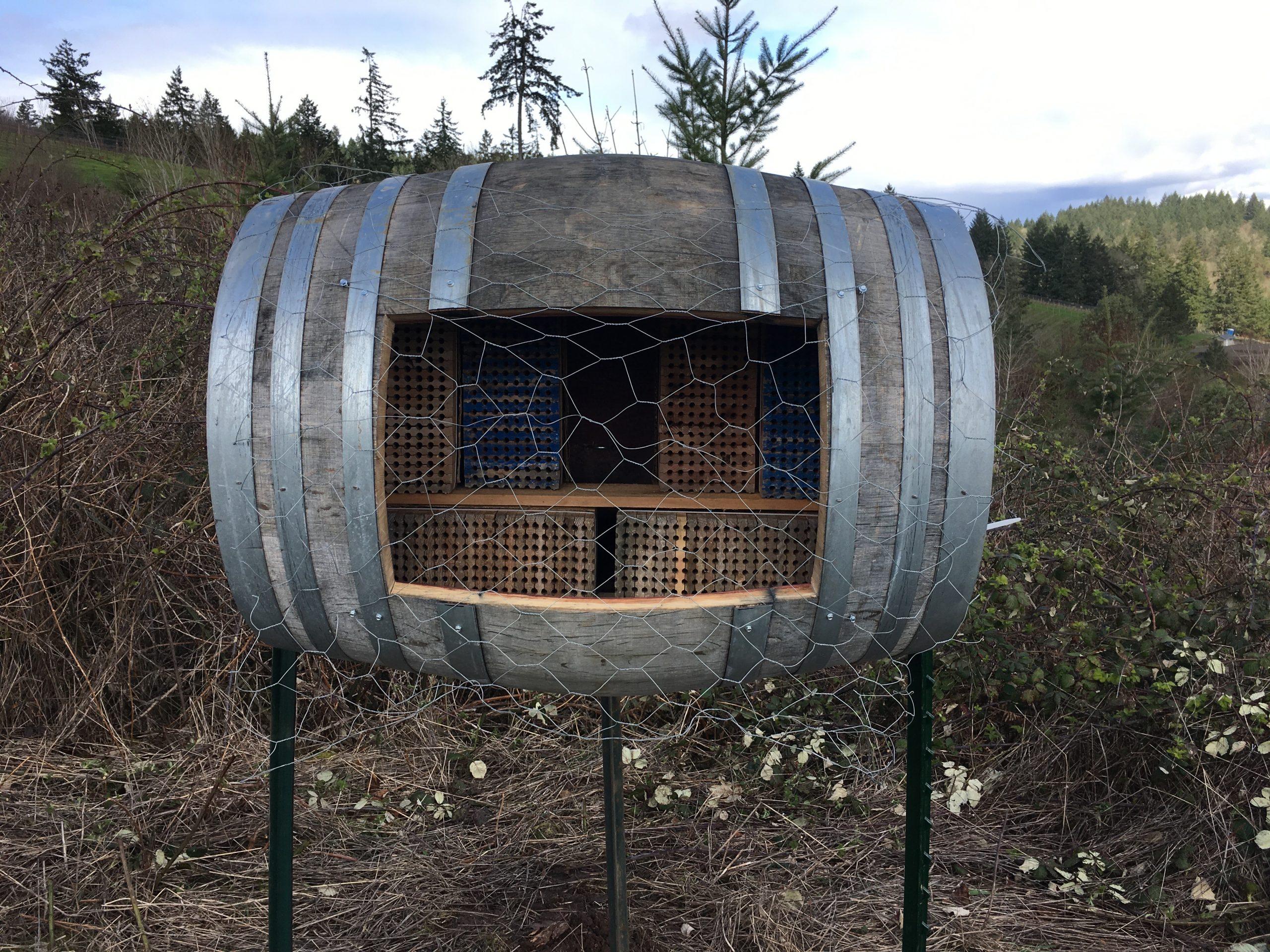 Orchard Mason Bee Incubator at Fairsing Vineyard