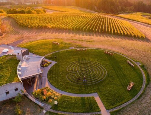 A Labyrinth By Design at Fairsing Vineyard