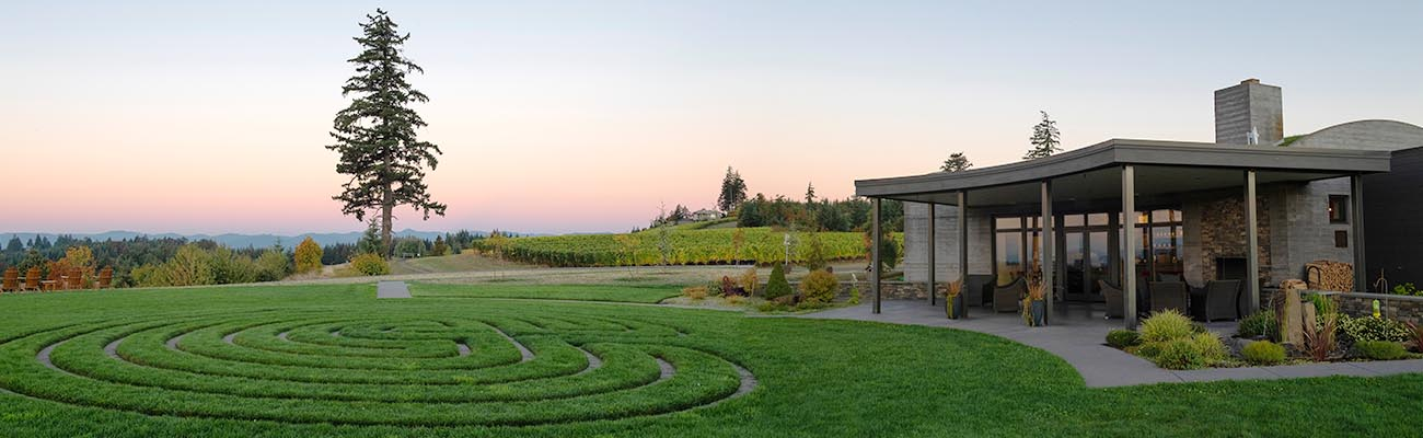 Fairsing Vineyard tasting room and Douglas fir tree enjoy the sunset in Oregon's Willamette Valley