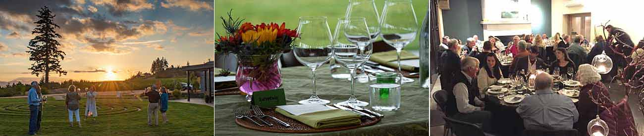 The Fairsing Vineyard Fall Wine Club Celebration features four seatings showcasing their estate wines