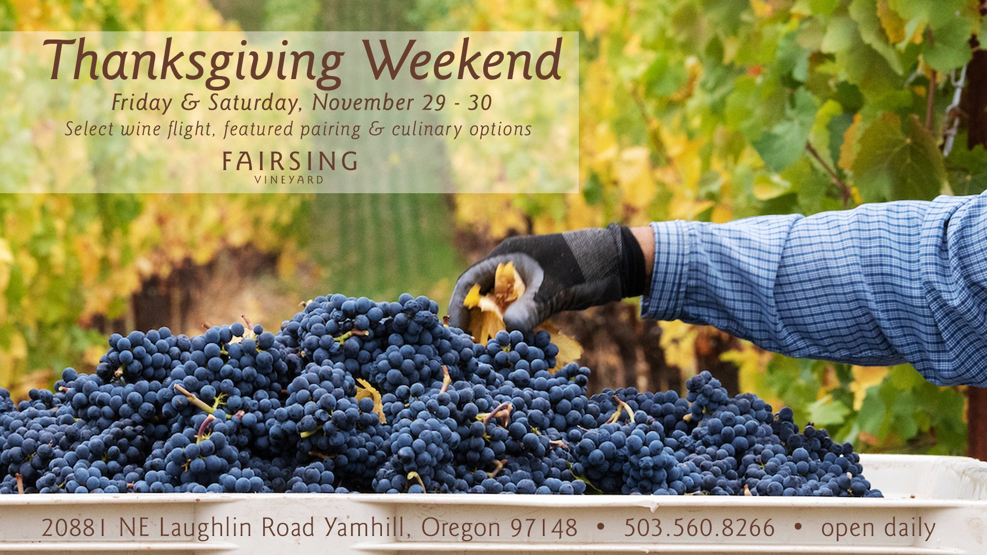 Thanksgiving Weekend @ Fairsing Vineyard