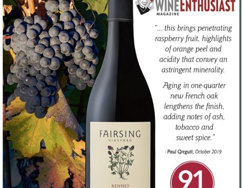 Honors for the 2017 Kenney Pinot Noir from Wine Enthusiast