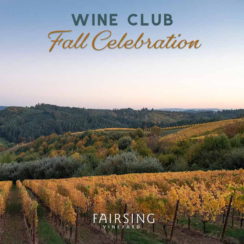 Golden vines and beautiful fall colors across the landscape visible from Fairsing Vineyard in Oregon's Willamette Valley