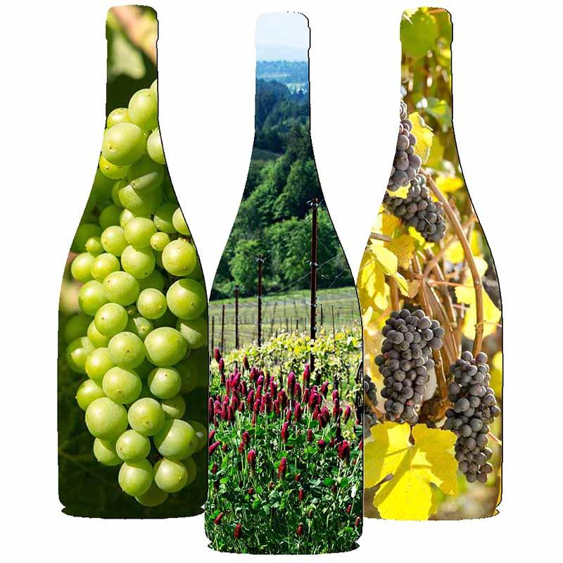 Three Fairsing Vineyard Pinot noir bottles representing the estate in Oregon's Willamette Valley